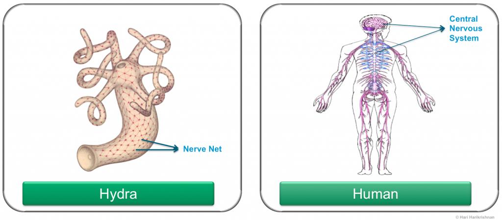 SDN & Biology